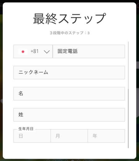 プレイヤー登録での記入項目
